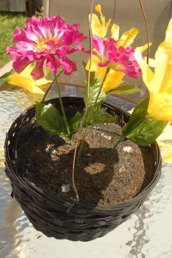 flower blog 6